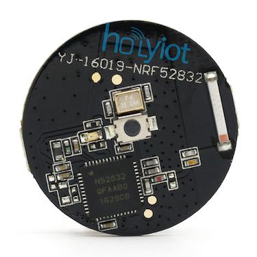 Holyiot YJ-16019 — Zephyr Project Documentation